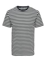 Regular Fit Stripe Tee in White and Navy