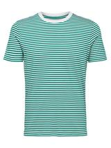 Regular Fit Stripe T-Shirt in Green and White