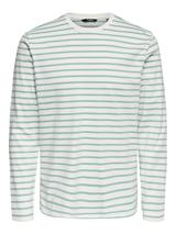 Long Sleeve Stripe Tee in Green and White