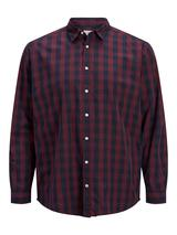 Plus Size Gingham Shirt in Red and Navy