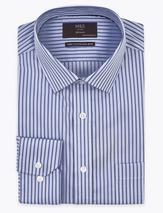 Pure Cotton Regular Fit Striped Shirt in Blue