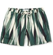 Striped Shell Swim Shorts in Green and White