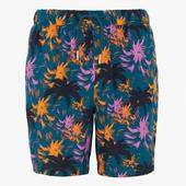 Turquoise Neon Palm Tree Print Shorts in Multicoloured and Green