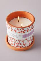 Blooming Terracotta Planter Candle in